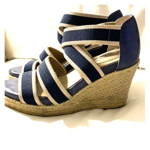 Blue and white wedges